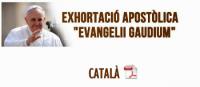 evangeliigaudiumcat